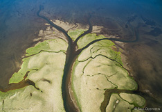 River flows into the lake Sigriðarstaðavatn at the coast of Vatsnes in northern Iceland. Aerial photo captured with a camera drone (Phantom).