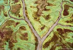 Geulen en schorren in het Verdronken land van Saeftinghe in Zeeland. Luchtfoto gemaakt met een camera drone door Paul Oostveen.