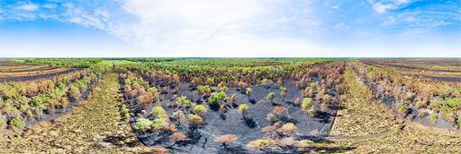 Deurnese Peel na de grote bosbrand van april 2020: 360 graden panorama gemaakt met een camera drone door Paul Oostveen.