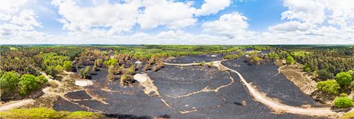 Meinweg na de grote bosbrand van april 2020: 360 graden panorama gemaakt met een camera drone door Paul Oostveen.