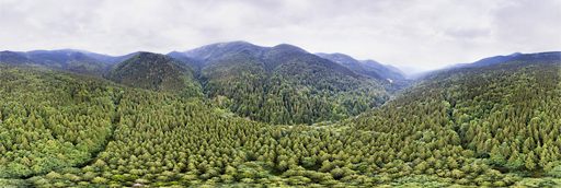 Carpathian mountains in Ukraine: 360 graden drone panorama captured by Paul Oostveen with camera drone.