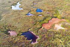 Colourful lakes in the Westfjords of Iceland. Aerial photo captured by drone.