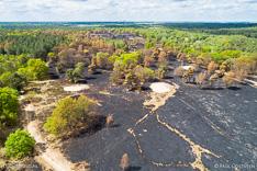 Verbrande hei en bomen in de Meinweg na de grote brand van april 2020 - luchtfoto gemaakt met een drone.