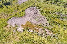 Droog ven in het Haaksbergerveen tijdens de droge zomer van 2018, gefotografeerd met een camera drone.