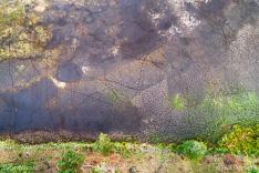 Sporen van dieren in een drooggevallen ven van de Leersumse Plassen in het Leersumse Veld tijdens de droge zomer van 2019, gefotografeerd met een camera drone.
