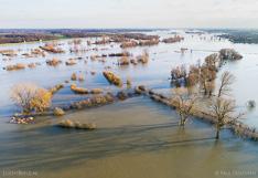 Ondergelopen uiterwaarden langs de IJssel. Luchtfoto gemaakt met een drone.