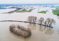 Ondergelopen uiterwaarden van Ravenswaarden langs de IJssel, vlakbij ruïne Nijenbeek. Luchtfoto gemaakt met een drone.