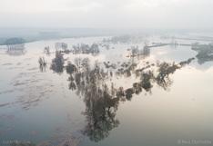Luchtfoto (drone) van de ondergelopen Ooijpolder langs de Waal.