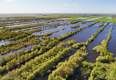 Natuurgebied De Deelen, een laagveen gebied in Friesland, gefotografeerd met een camera drone.
