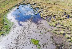 Luchtbeeld van een veengebied, gefotografeerd met een drone.