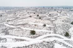 Sneeuw in de Sallandse Heulvelrug. Luchtfoto gemaakt met een drone.