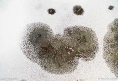 Snow face: Bevroren water van boven gefotografeerd met een drone.