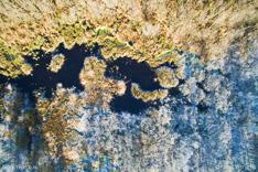 Dooi (in de zon) en vorst (in de schaduw), van boven gefotografeerd met een cameradrone.