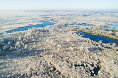 Rijp in het Haaksbergerveen in de winter, gefotografeerd met een camera drone